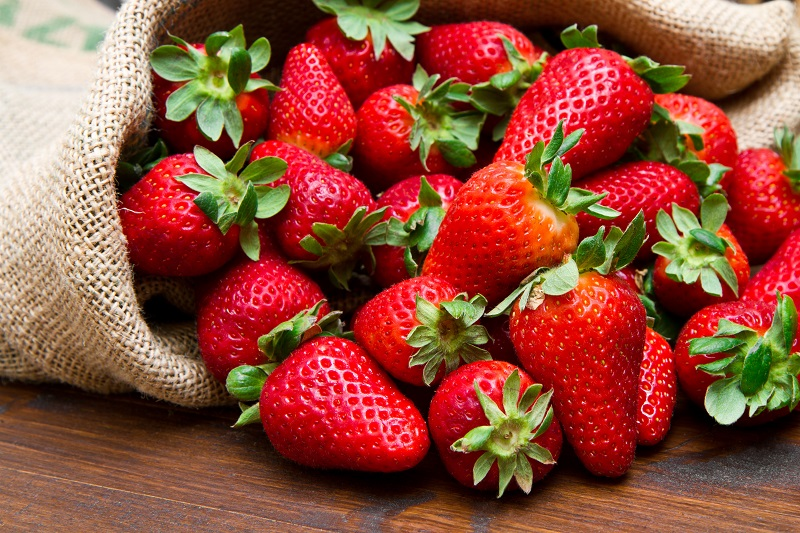 Vitamin C and E in strawberry are good for dog's digestive system